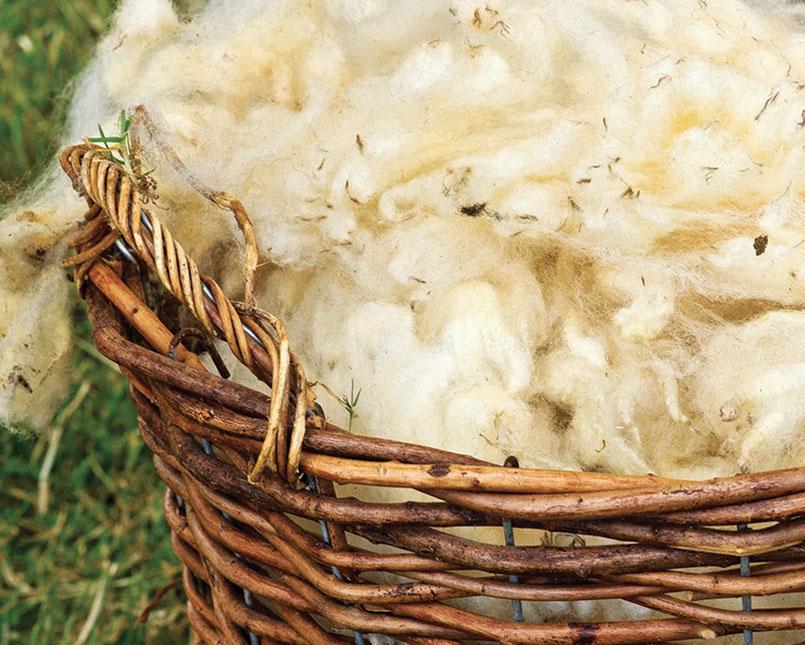 Cesta con lana sucida (804x645)
